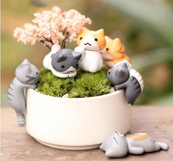 gatos en miniatura